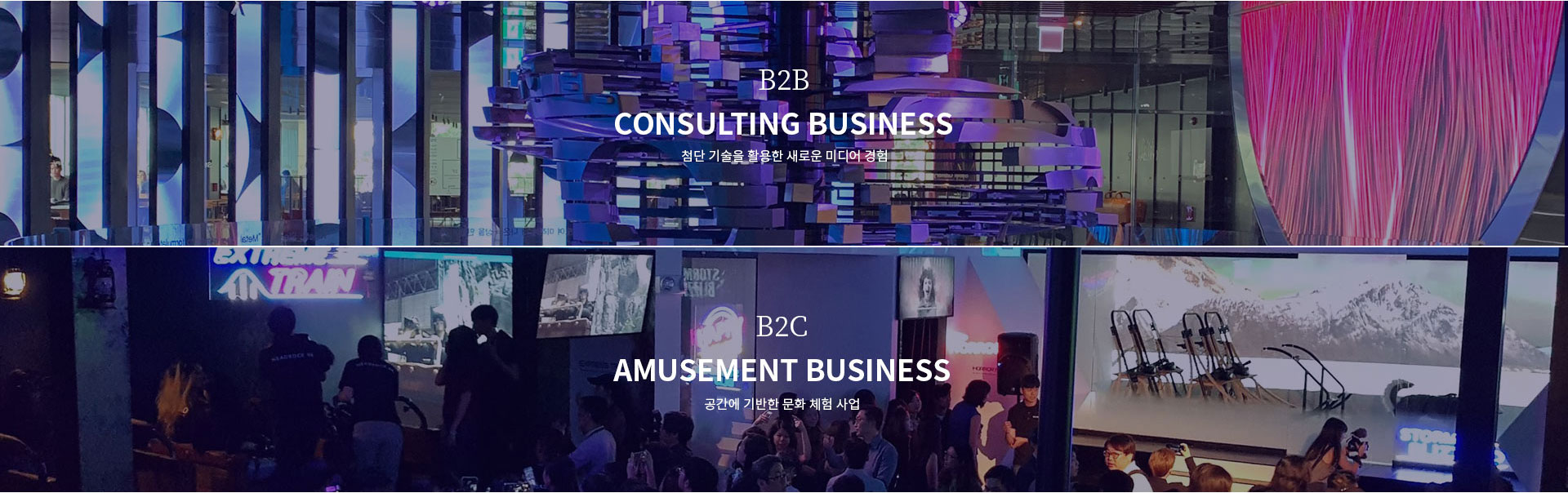 B2B CONSULTING BUSINESS, B2C AMUSEMENT BUSINESS